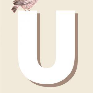 U - Børneplakat med bogstav