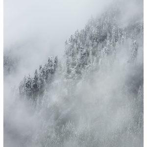 Winter is coming - Brian Lichtenstein plakat